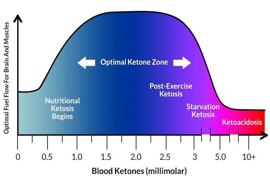 Ketone levels